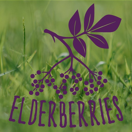 Elderberries logo